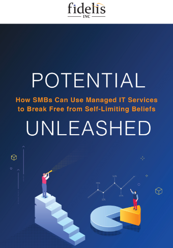 LD-Fidelis-Potential-How-SMBsCanUse-ManagedITServices-eBook-Cover